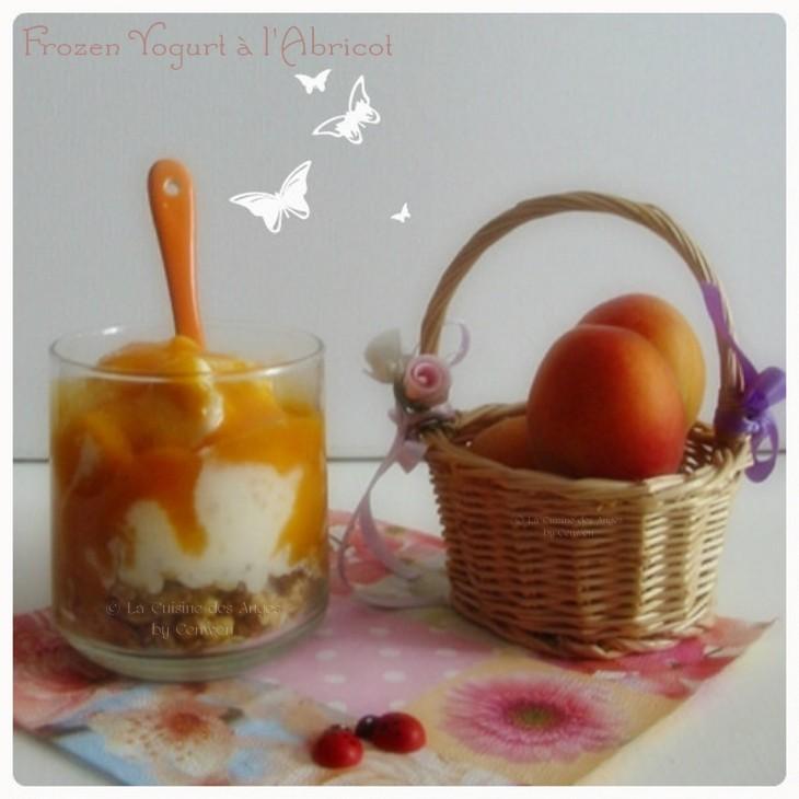 Recette de Frozen Yogurt ou yaourt glacé à l'abricot, accompagné d'un coulis d'abricots à la vanille et de pépites de céréales