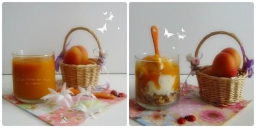 Recette de frozen yogurt ou yaourt glacé à l'Abricot, coulis d'abricots à la vanille et pépites de céréales