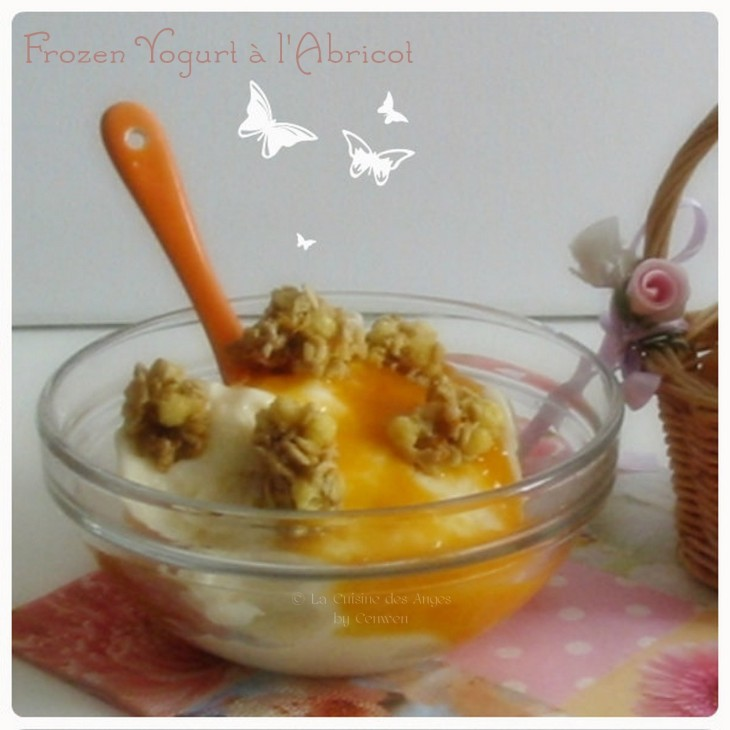 Recette de Frozen Yogurt ou yaourt glacéà l'Abricot, coulis d'abricots à la vanille et pépites de céréales