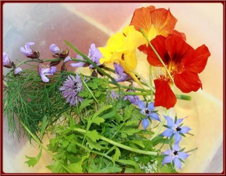 Fleurs à ma table, dans mon assiette… Mais pas n'importe quoi !  du blog La Table Lorraine d'Amélie