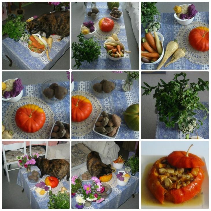 les beaux légumes bio du jardin de Mr Amélie ♥