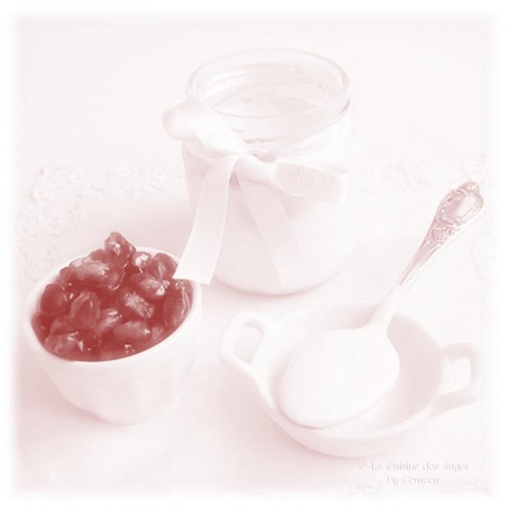 ♥ Yaourt à la Vanille et  au Fructose  ~ Pépins de  Grenade ♥