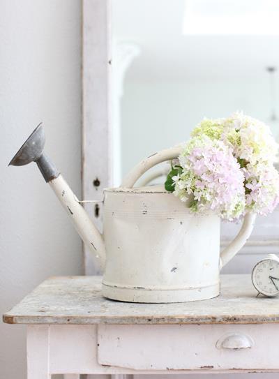 arrosoir ancien en métal patiné blanc et fleurs blanches