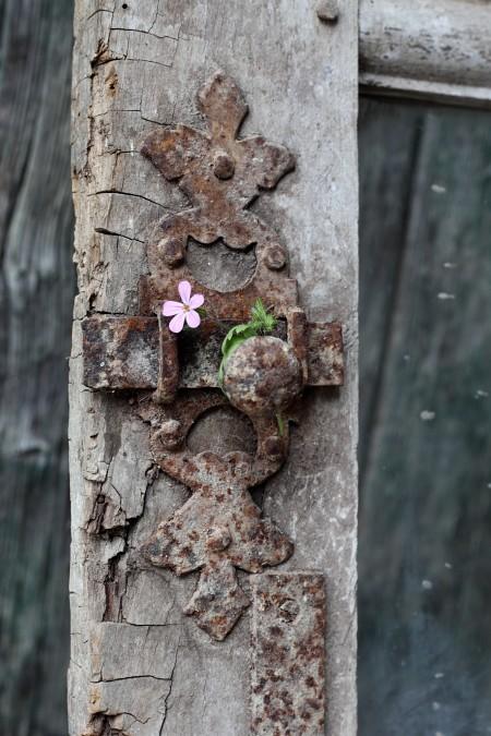 clef et fleur rose