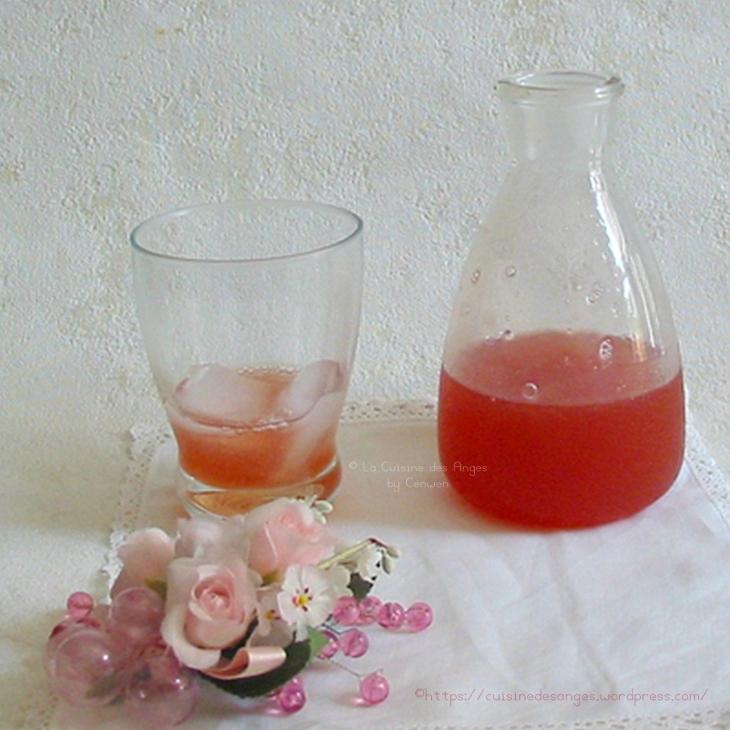 sirop de rhubarbe à la rose et au citron vert, fait maison, à diluer dans de l'eau