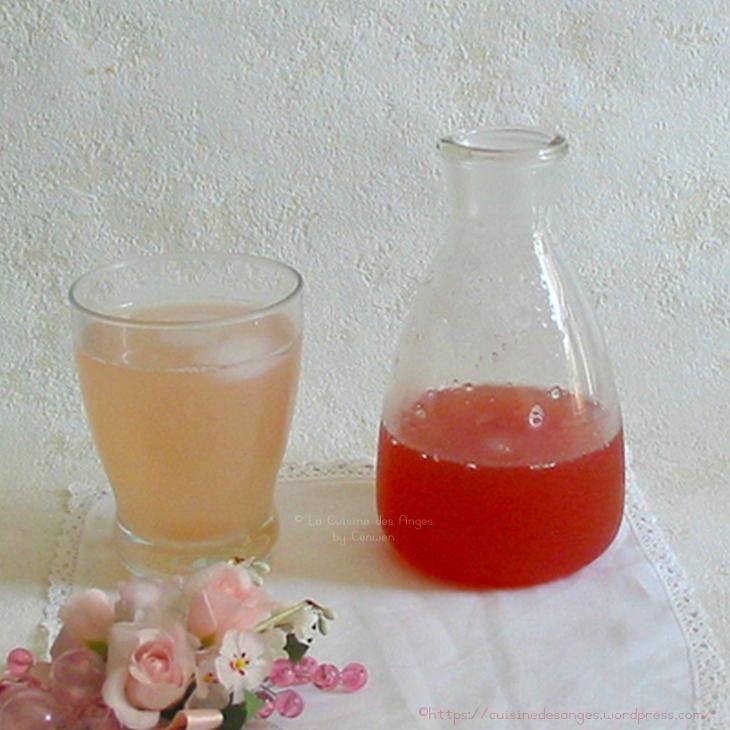 recette de sirop à diluer dans de l'eau à base de rhubarbe, citron vert et arôme de rose