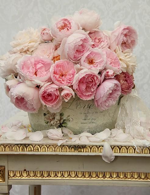 Bouquet de roses roses, dans une jardinière rétro
