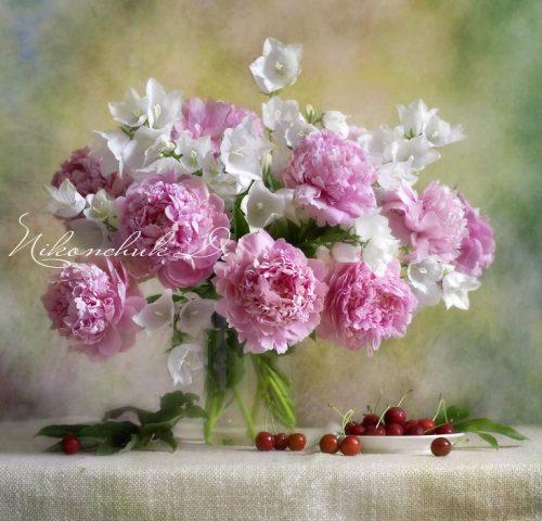 bouquet de pivoines roses et de fleurs blanches,