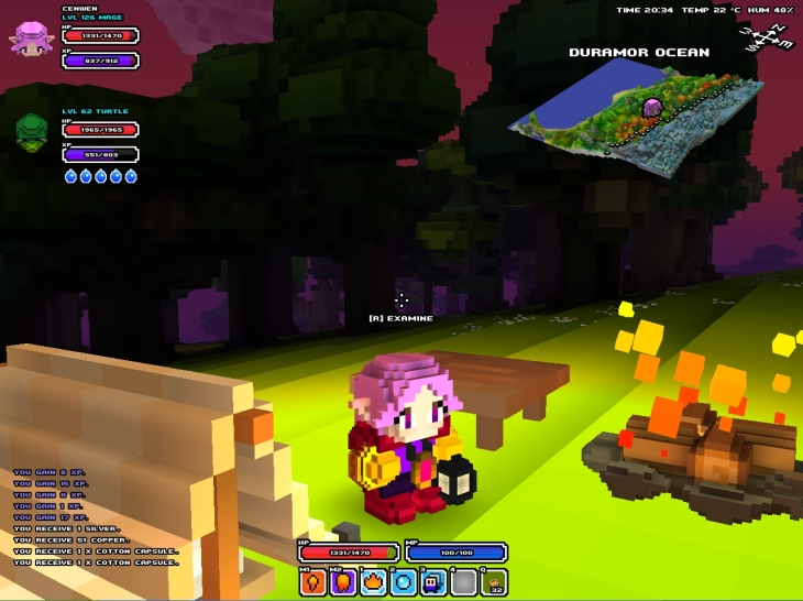 screen cubeworld