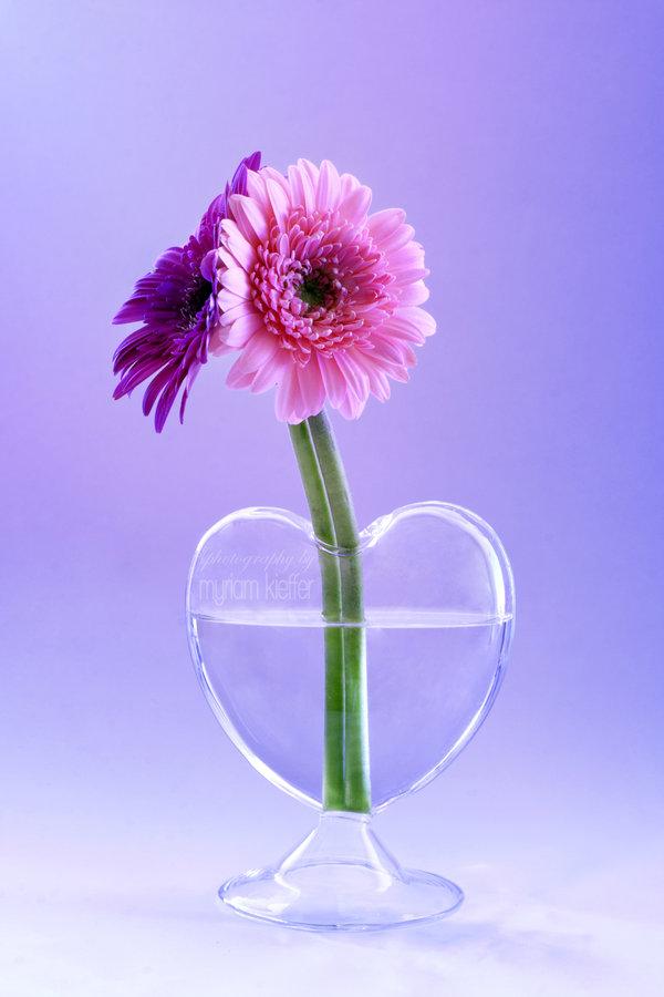 vase en forme de coeur avec une fleur rose et une fleur mauve