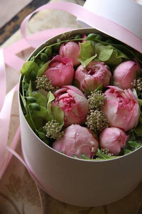 boite rose remplie de roses roses