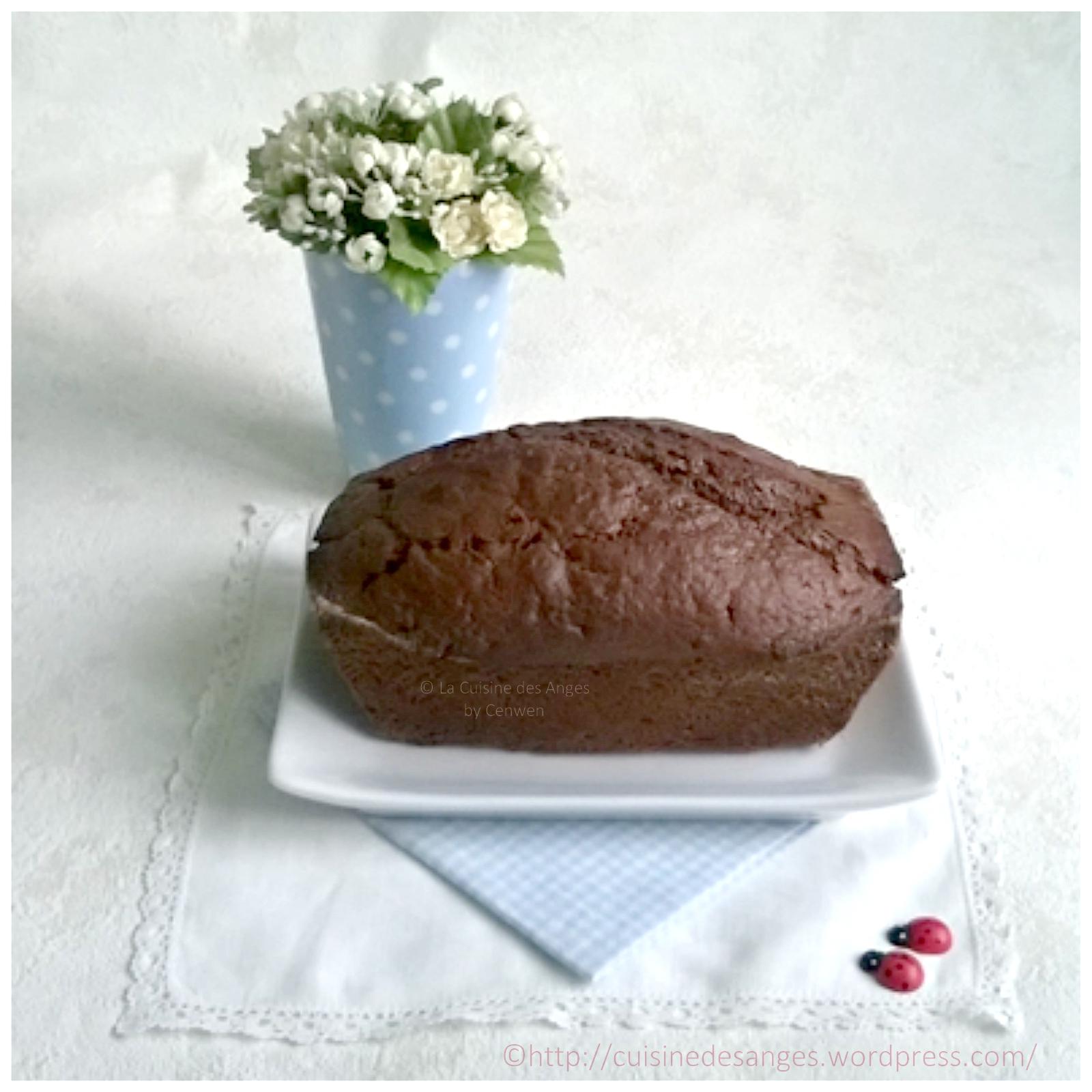 Top Cake au chocolat, recette Weight Watchers – La Cuisine des Anges AB14