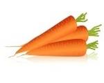 la carotte, un légume de saison qui se cuisine au mois de juin