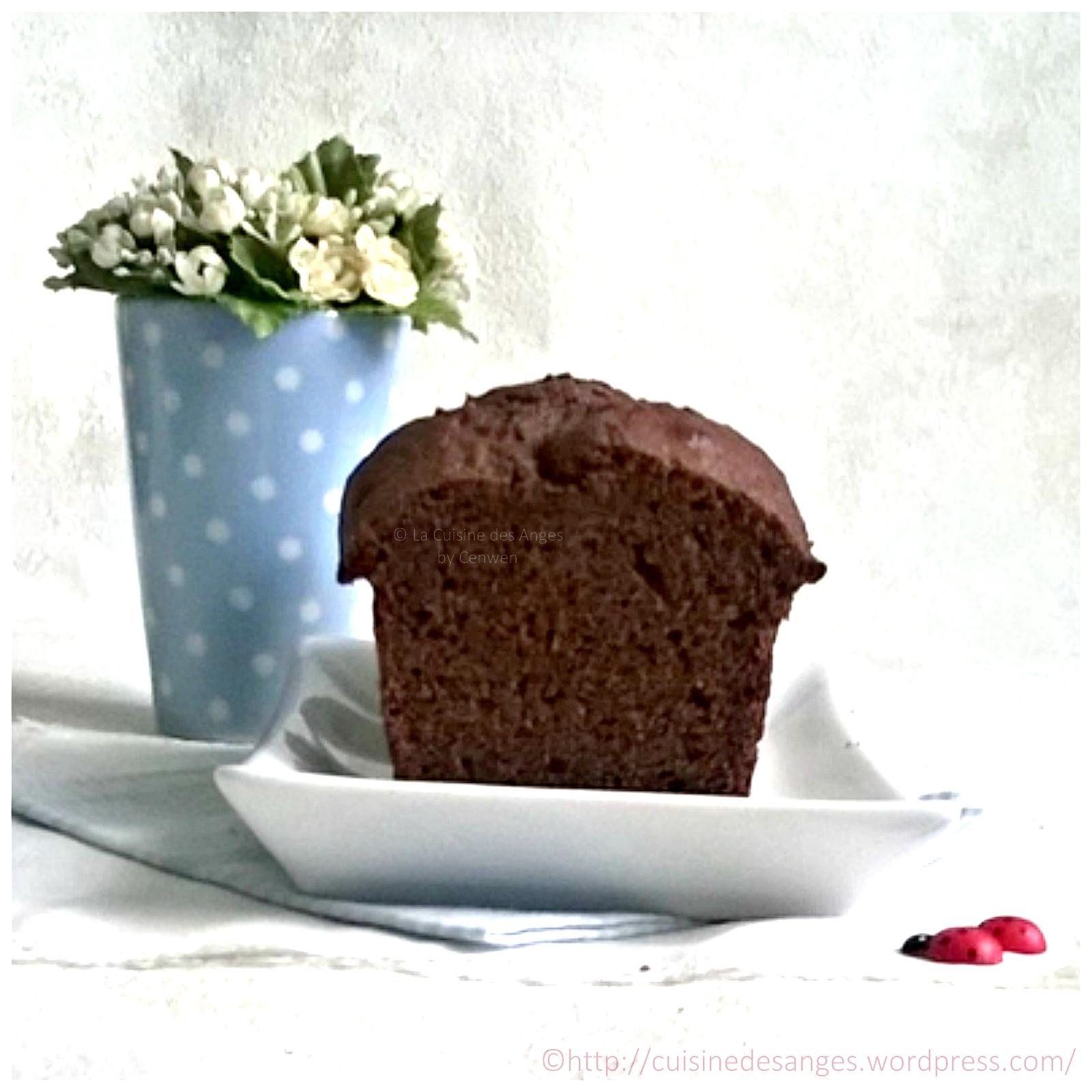 Cake au chocolat recette weight watchers la cuisine des anges - Herve cuisine cake chocolat ...