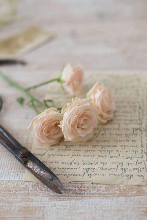 petit bouquet de roses roses
