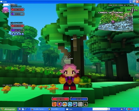 Cube world, magicienne elfe et son pet