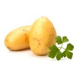 La pomme de terre, un légume de saison qui se cuisine en août
