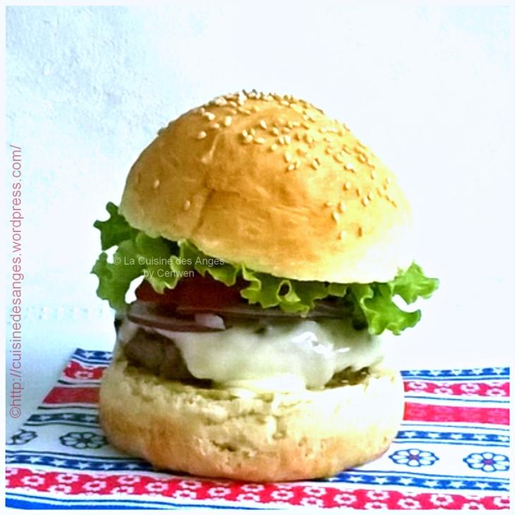 Recette de hamburger maison : petits pains maison, viande hachée, oignon, tomate, salade, sauce