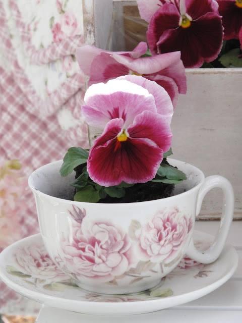 pensée mauve dans une tasse en porcelaine