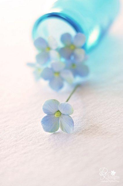 petites fleurs bleues dans un vase bleu