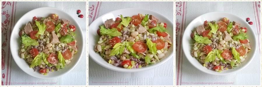 Salade de haricots blancs au céleri, tomates cerises etthon