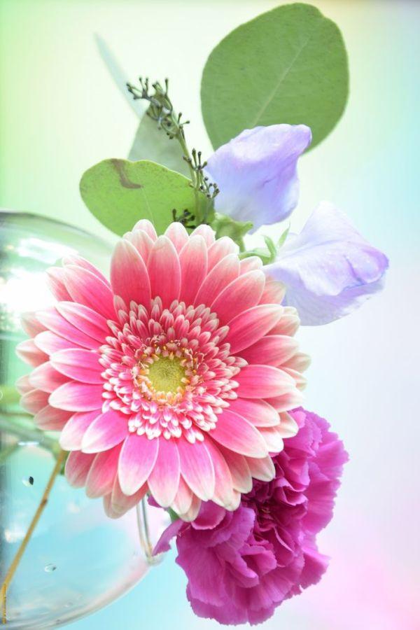 Le bouquet du dimanche#40