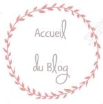 Logo de retour à l'accueil du blog