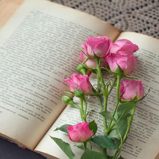 Le bouquet du dimanche#43
